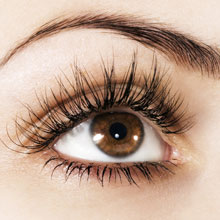 Eyebrow Shaping & Hair Removal